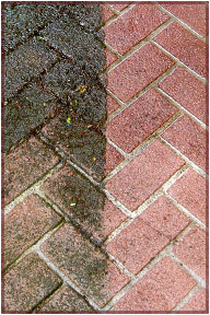 Driveway Cleaning for Ashford, Maidstone and Tonbridge