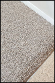 Carpet Cleaning Maidstone, Ashford, Tonbridge