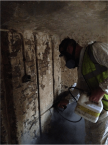 mould-remediation-hydro-dynamix-kent-00009