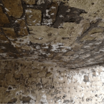 mould-remediation-hydro-dynamix-kent-00012